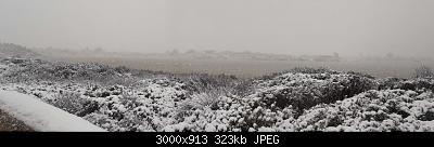 Foto neve 13/14 febbraio 2021-14feb21-9-.jpg