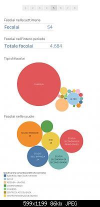 Nuovo Virus Cinese-report-settimana-8-14.2.jpg