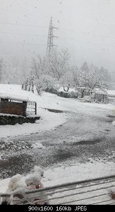 NOWCASTING PRIMAVERA 2021: Varese - Como - Lecco - Canton Ticino-baef9822-d69b-4a44-ace9-b865d8683c93.jpeg