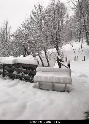 Basso Piemonte CN-AL-AT Marzo 2021-161966414_10222556742379098_1623613380146321795_n.jpg