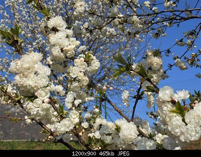 NOWCASTING Nazionale Marzo 2021-dscn6438-2-.jpg