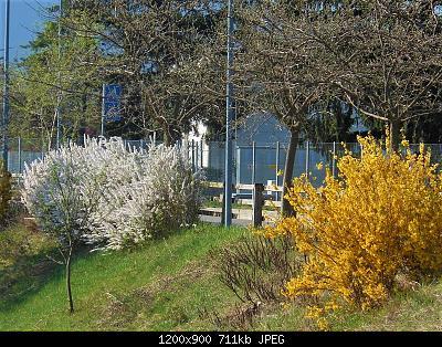 NOWCASTING Nazionale Marzo 2021-dscn6442-2-.jpg