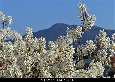NOWCASTING Nazionale Marzo 2021-dscn6445-3-.jpg