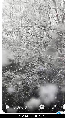 Lazio Abruzzo Marche Umbria LAMU aprile 2021-screenshot_2021-04-07-7-meteo-appassionati-pesaro-urbino-sfreddatacasting-pasqua-snowc.png