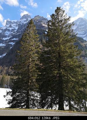 Nowcasting nivoglaciale Alpi primavera 2021-img_20210424_174246.jpg