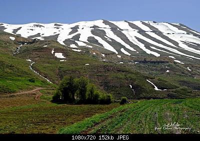 Catena del Libano - Situazione neve attraverso le stagioni-180213550_4266826443330280_3830149302681684977_n.jpg