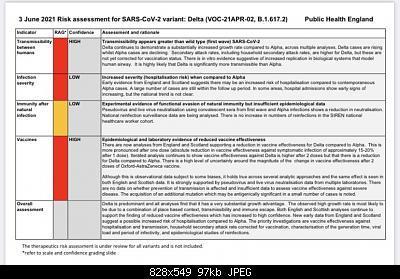 Nuovo Virus Cinese-report_england.jpg