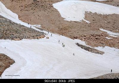 Catena del Libano - Situazione neve attraverso le stagioni-197942199_4355442284467940_8648988256687331889_n.jpg
