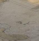 Conca Prevala (sella Nevea-ud) 15-08-09... e altre foto di confronto-archetto.png