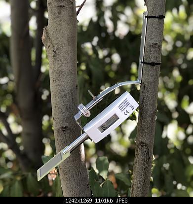 sensore di bagnatura fogliare-3c9db26e-107d-4601-ba1e-302facd90b73.jpeg