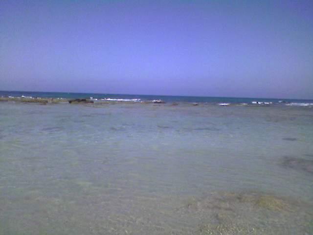 Spiaggia di Pantanagianni (BR)-photo-0120.jpg