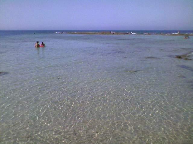 Spiaggia di Pantanagianni (BR)-photo-0123.jpg