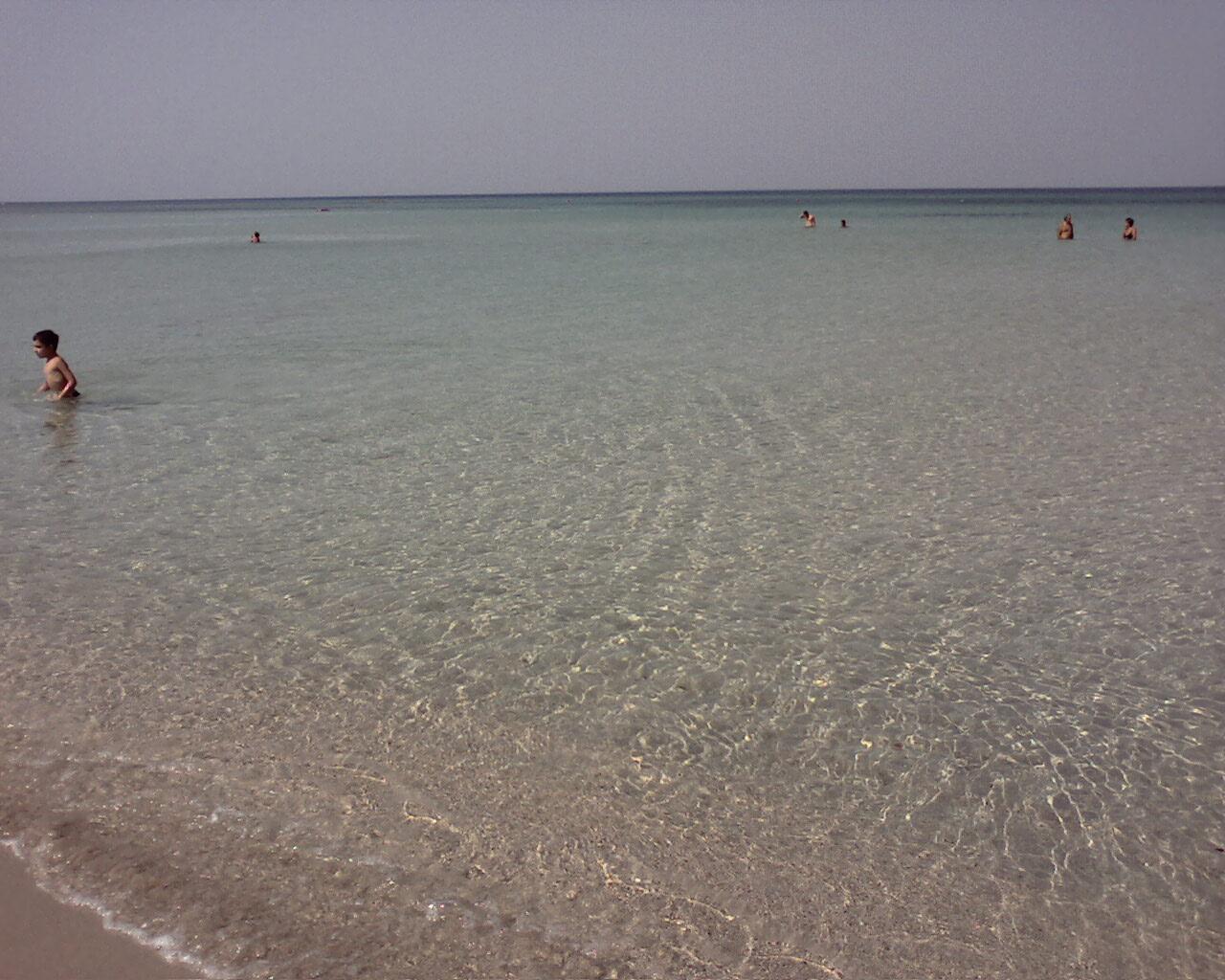 Spiaggia di Pantanagianni (BR)-immagine-011.jpg