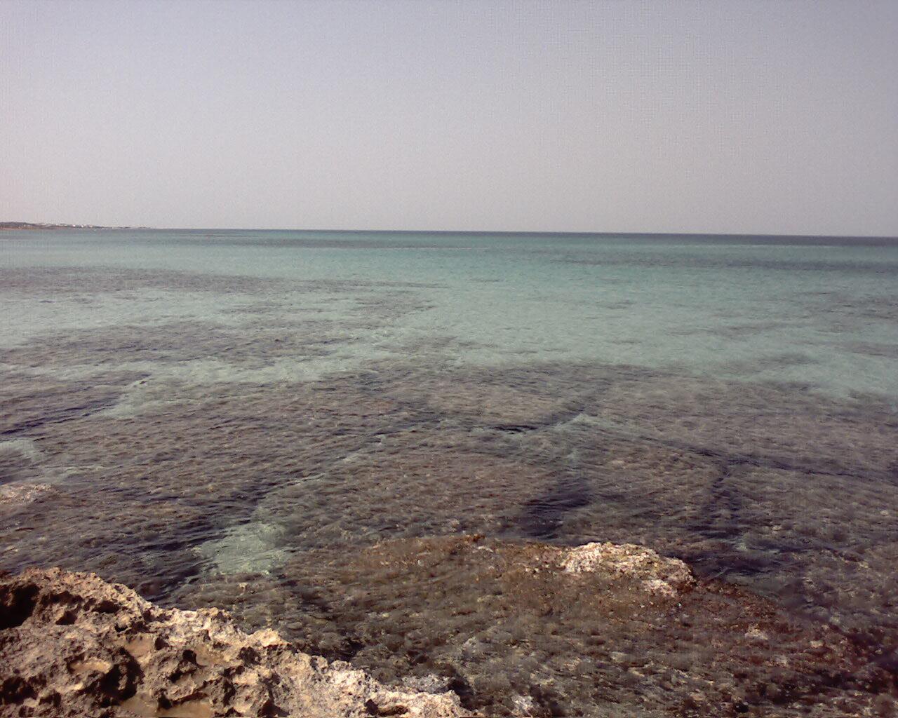 Spiaggia di Pantanagianni (BR)-immagine-019.jpg