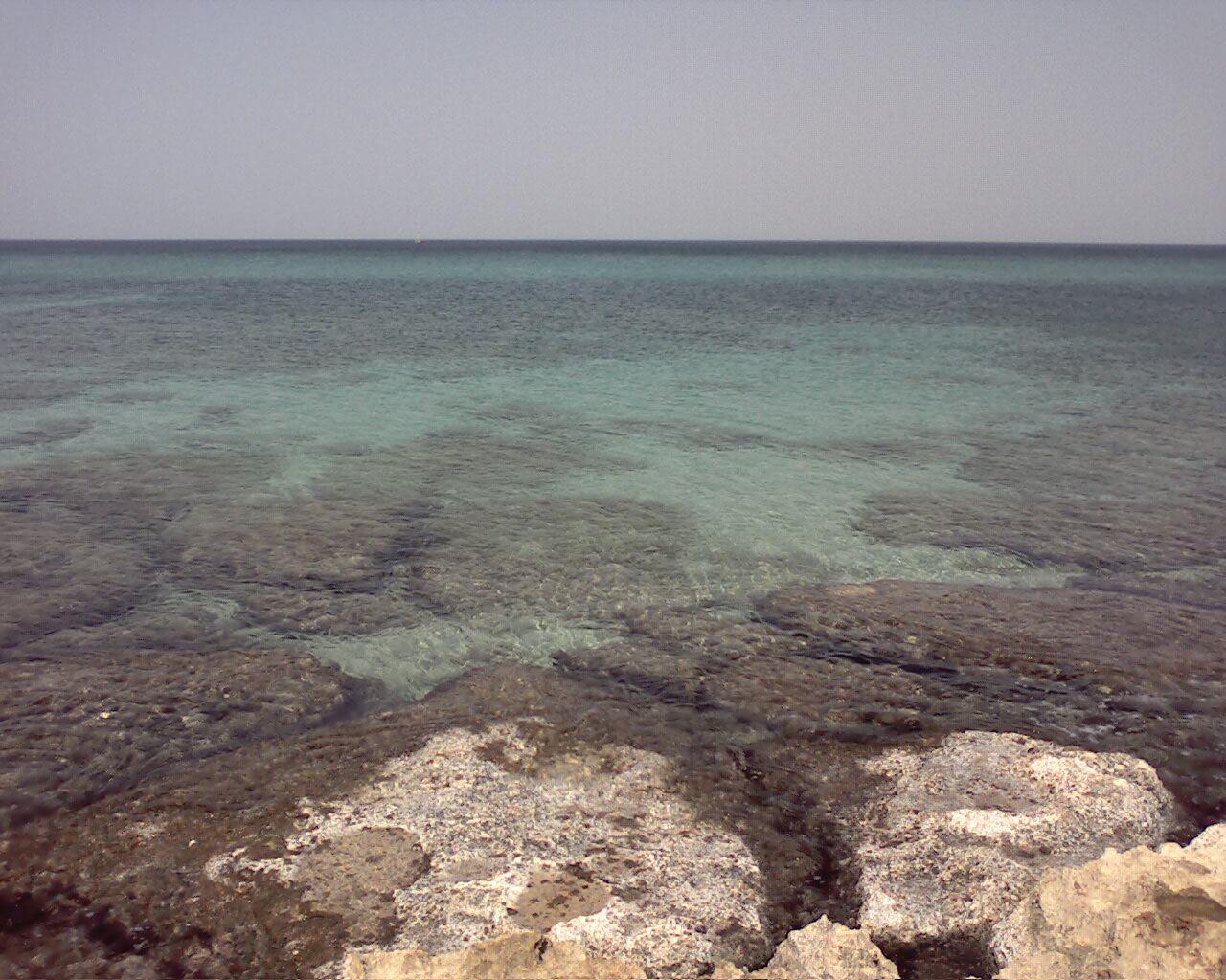 Spiaggia di Pantanagianni (BR)-immagine-020.jpg