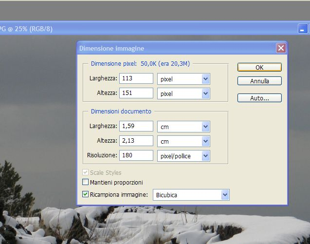 URGENTE! Riduzione peso foto con IrfanWiev per CV (HELP ME per favore!)-3.jpg