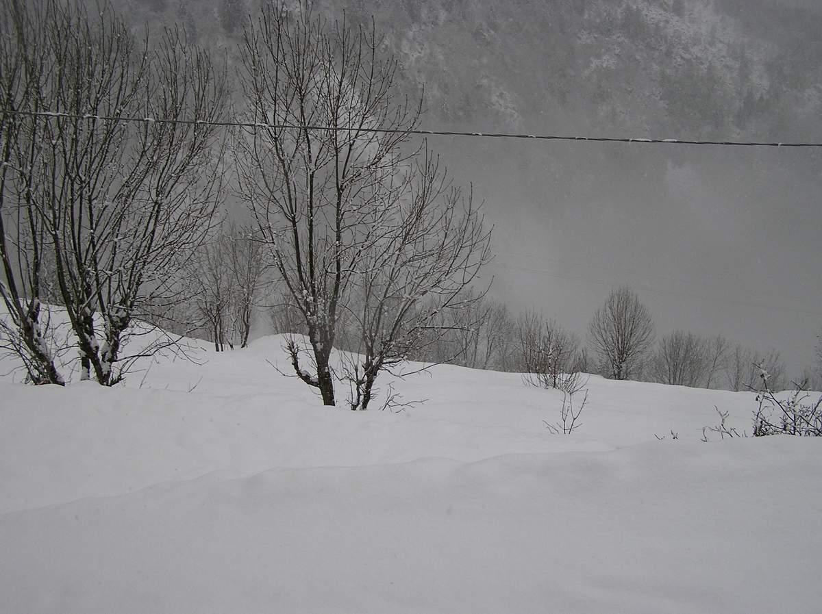 Nowcasting Valtellina, Valchiavenna Valsassina e alto Lario 5/1/08-3-0501085.jpg